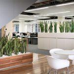 Como crear distintos espacios en las oficinas