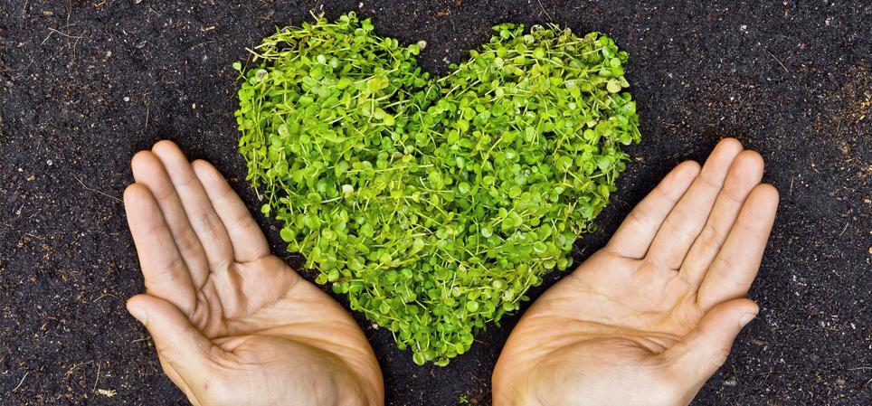 Comprometidos con nuestro medio ambiente