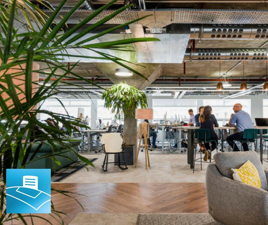 oficina con plantas altas y maceteros