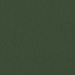 P Verde 58