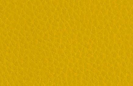 Ambigu amarillo
